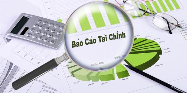 Báo cáo tài chính hợp nhất đã được kiểm toán cho năm tài chính kết thúc ngày 31/12/2020
